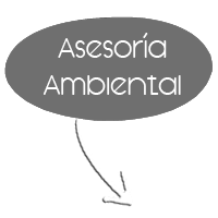 Asesoria Ambiental